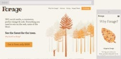 screenshots of my $999 Forage site.