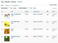 screenshot of the WordPress Media table