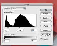 screenshot of the Levels panel in Photoshop being tweaked