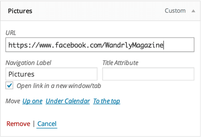 the navigation item editor, now showing a checkbox that allows us to set the link to open in a new window
