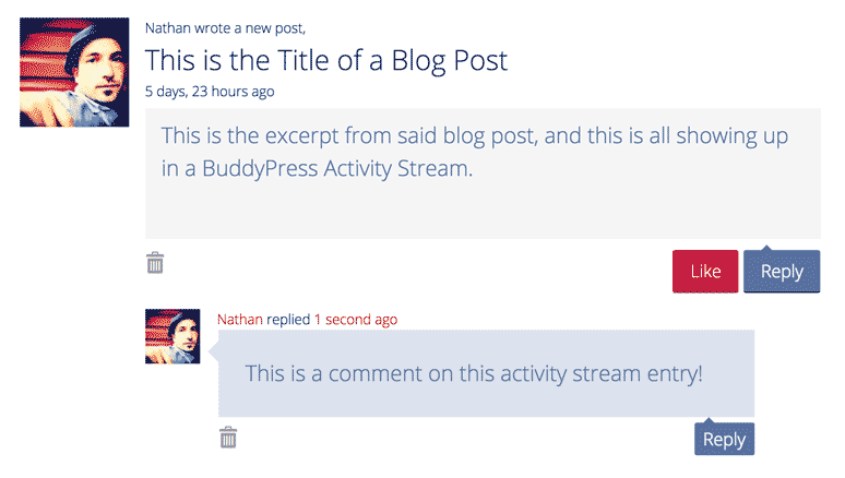 screenshot showing an activity stream entry in Buddypress sharing a new blog post, and an associated comment