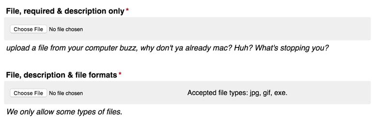 File uploads match other inputs.