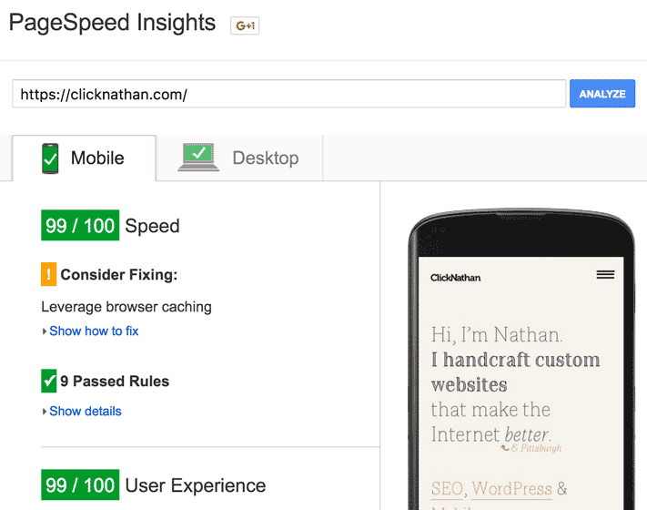 ClickNathan killing it with a 99/100 score on Pagespeed