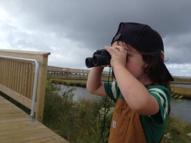 a young naturalist glassing birds in Maryland
