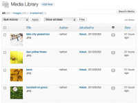 screenshot of the WordPress Media table