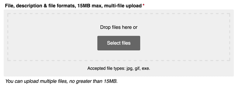 Multi-file uploads look great alongside other form elements, too.