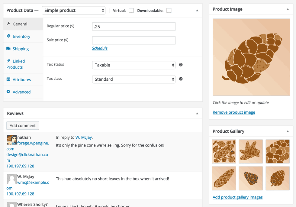 screenshot of some woocommerce product options