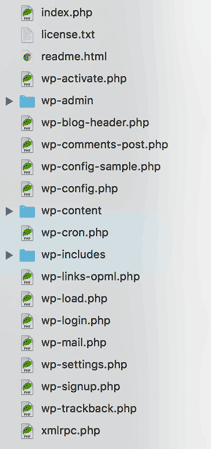 typical file structure of a WordPress site