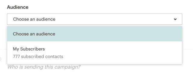 dropdown in mailchimp where you choose your audience